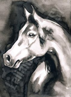 Arabian horse - Animal black ink art print by LelianaShop on Etsy Black Ink Art, Watercolor Paintings, Original Paintings, Star Gift, Moose Art, Horses, Art Prints, Pictures, Etsy