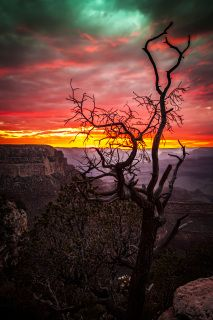 This piece is a new favorite. My kids and I enjoyed this moment in July 2014 as the sun was setting at the Grand Canyon in Arizona. The title Inflaming Serenity is meant to be somewhat of a contradiction as that moment  was intense (and I was passionate in getting some shots) yet there was a calmness that was peaceful there in the moment with my kids and with  people from around the world.
