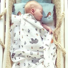 Can you think anything sweeter than a sleeping baby with his woodland friends?  Organic cotton muslin swaddle set - Into the woods + Little Robin by Little blue nest baby