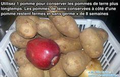 L'Astuce Infaillible Pour Empêcher les Pommes de Terre de Germer.