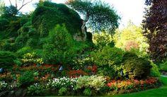 Diseñar una rocalla de jardín   EROSKI CONSUMER