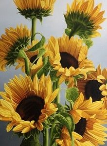 Sunflower paintings are often a treat to eyes. It is a beautiful floral subject preferred by many artists. Van Gogh sunflower painting series is considered Sunflower Painting Van Gogh, Sunflower Paintings, Paintings Of Sunflowers, Provence Garden, Sunflowers And Daisies, Sun Flowers, Paintings Famous, Oil Paintings, Sunflower Pictures