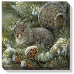 Picture Gray Squirrel Wrapped Canvas Art by Artist Rosemary Millette | On sale for $35.99, free shipping available!