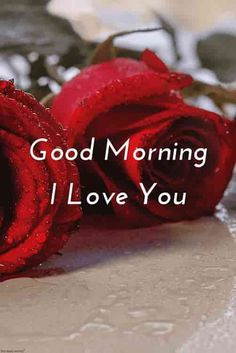 Good Morning Images For Lover Cute Love Wishes Good Morning