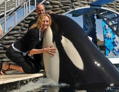 SeaWorld Puts Its Whales On Valium-Like Drug, Documents Show - Just another example of how corrupt Sea World, and other ignorant aquarium/waterworld chains, are. Orcas, Marine Biology Jobs, Film Pulp Fiction, Animal Law, Save The Whales, Uma Thurman, Delphine, Ocean Creatures, Killer Whales