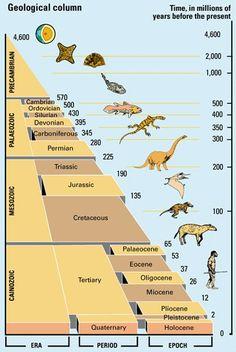 Geologocal Timeline