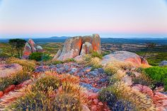 Gawler Ranges South Australia Getty Image Got up at to catch the pre dawn light on these rocks! Adelaide South Australia, Western Australia, Tasmania, Wanderlust, To Infinity And Beyond, Australia Travel, Visit Australia, Australia Living, Landscape Photography