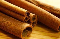 How to Grow Cinnamon Tree Plants