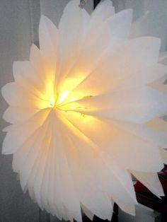 Papierlampions aus Butterbrottüten:  Einige Zuschauerinnen haben Martina Lammel auf die Idee der Sterne aus Vespertüten aufmerksam gemacht. Die Idee ist einfach und effektiv. Unsere Designerin hat sich überlegt, wie man die Sterne in leuchtende Lampions umfunktionieren könnte. Hier ist die Lösung!                                                                                                                                                                                 Mehr