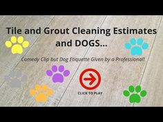 Tile and Grout Cleaning Estimates and DOGS! - YouTube