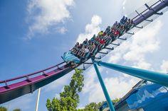 7 atrações e brinquedos do Parque Seaworld em Orlando #viagem #orlando #disney