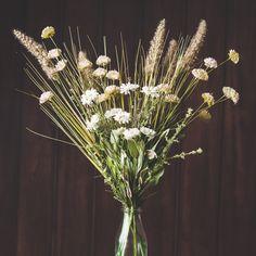 Media Flowers
