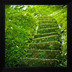 outdoor staircase - print this on wood for a natural look