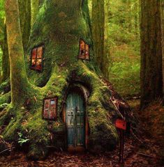 Tree House, The Magic Forest- Fairy Houses Beautiful Tree Houses, House Beautiful, Magic Forest, Fairy Tale Forest, Fairy Land, Fairy Houses, Faeries, Woodland, Homesteads