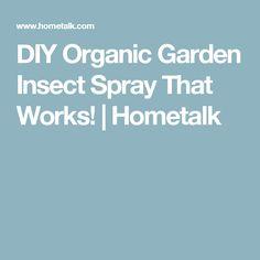 DIY Organic Garden Insect Spray That Works! | Hometalk