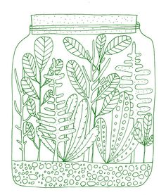Terrarium – Lisa Congdon Art + Illustration
