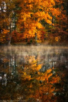 Autumn, Brewster, New York