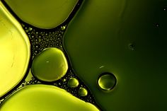 BUBBLES~Shades Of Green by Sharon Johnstone