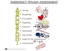 The 60 Second Patient Assessment in Trauma » The Homestead Survival