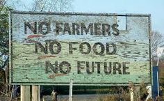 Support your local farmers Farm Humor, Chicken Feed, Elephant Love, Slow Food, Country Life, Country Sayings, Garden Projects, Real Food Recipes, Sustainability