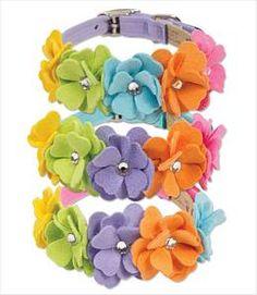 Rainbow Tinkies Garden Dog Collars