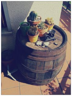 Old barrel as a decoration. Wash Tubs, Milk Cans, Barrels, B & B, Country Living, Pallet, Cactus, Succulents, Wheels