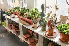 Clementina-ceramics-miss-moss-stokperd-10