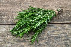 Rosemary is one of the most aromatic and pungent herbs around, here are 20 creative ways to use this wonderful versatile herb and not just in delicious tasting recipes. Uses For Rosemary, Rosemary Plant, Herbs For Health, Health And Wellness, Party Food Buffet, Best Hair Oil, Room Freshener, Chest Congestion, Digestion Process