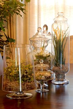 Interior Design photo by You and Your Decor Album - Far North Suburbs: love the use of multiple jars...easy to find.
