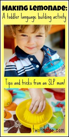 Making Lemonade: A Toddler Language Building Activity. Learn how to use a simple summer activity to boost your toddler's language skills with tips and tricks from and speech therapist turned stay-at-home mom of twins!