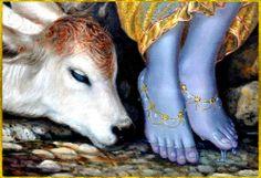 .KRISHNA's lotus feet.