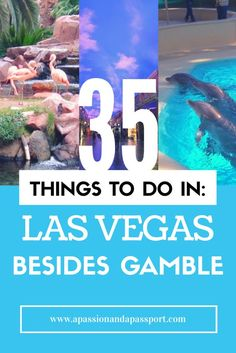 Heading to Vegas soon but don't want to gamble? Don't fret- there's SO much more to do in Las Vegas besides gamble! Check out my top 35 ideas!