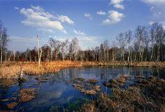Bahenní sopky - Národní přírodní rezervace Soos - evropská rarita