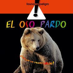 El oso pardo: Combel Editorial