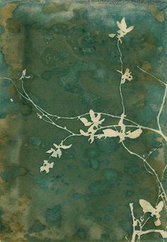 Wandering Flowers / faded green and brown / emerald Botanical Illustration, Botanical Prints, Floral Prints, Cyanotype Process, Sun Prints, Alternative Photography, Gelli Printing, Printmaking, Framed Art