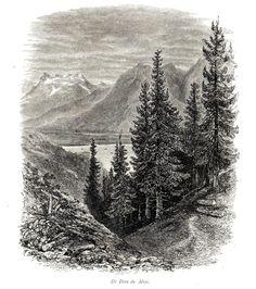 Antique print Lake Geneva Switzerland 1880 Lac Léman Dent du Miai gravure Suisse