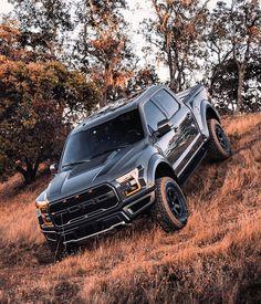 Ford Pickup Trucks, 4x4 Trucks, Cool Trucks, F650 Trucks, Custom Trucks, Black Ford Raptor, Hummer Cars, Top Luxury Cars, Van