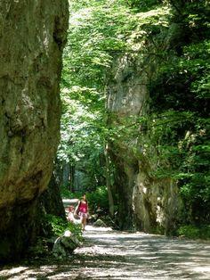 Zadielska gorge, Slovak Karst National Park, Slovakia - 2
