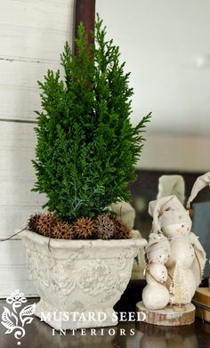 Small potted tree placed in a decorative pot with sweet gum balls around the base - could DIY with Rosemary for aromatic effect Christmas In July, Christmas Crafts, Christmas Decorations, Cozy Christmas, Holiday Decorating, Sweet Gum, Crafty Craft, Crafting, Natural Christmas