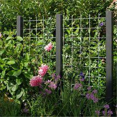 10 Unique Garden Fence Decoration Ideas to Brighten Your Yard - HomyBuzz Diy Trellis, Garden Trellis, Garden Arbor, Garden Fencing, Verticle Garden, Espalier, Garden Screening, Fence Landscaping, Unique Gardens