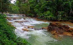 Forest River jpg