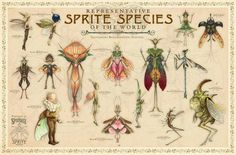 Sprite species, it sort of reminds me of the book the chronicles of spiderwick!!!!