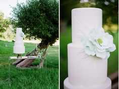 mint green sugar flower with a hard candy center. Layers of raspberry swirl cake paired with a fresh raspberry. Cake by One Sweet Slice Lucite Table, Cupcake Cakes, Cupcakes, Swirl Cake, Raspberry Cake, Rustic Weddings, Outdoor Parties, Cake Table, Sugar Flowers