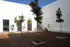 D'CASA   Ecorkhotel, Évora Suites & SPA