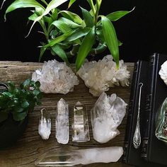 Crystals, stones and other magic. Stay tuned for Aloha Gaia (www.alohagaia.com) Home Store