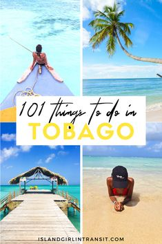 Island Girl In-Transit: Tobago has a wide variety of diversions to entertain almost every style of traveler. Check out these 101 truly cool things to do in Tobago, for everyone from beach bums to those in search of a little adrenaline rush. #caribbeantravel #tobago #visittobago #traveltips #101reasonstobago Caribbean Vacations, Caribbean Cruise, Best Travel Guides, Travel Tips, Island Girl, Mexico Travel, Beautiful Islands, Central America, Travel Around The World