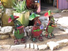 bwisegardening - I saw these at the Natural Gardener in Austin, Texas. So fun!