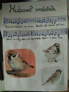 Kids Songs, Bird, Animals, Animales, Animaux, Nursery Songs, Birds, Animal, Animais