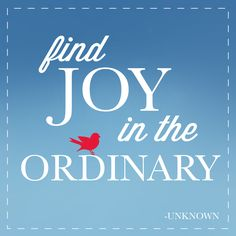 Quote: Find joy in the ordinary. - Unknown