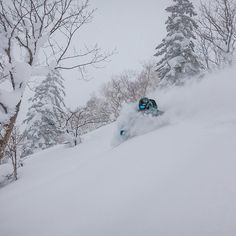 Fall is in the air and that means it's time to start getting ready for Japan. Inquiry link in bio. #SASSjapan #japanuary #japow #skiing #deep #getsomeSASS P: @lucasmoorephoto